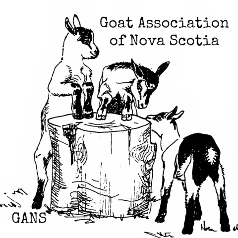 Goat Association of Nova Scotia
